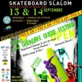 Grenoble Glisse Festival et DéSaXé World Cup skateboard slalom 2008 – 13-14 sept.2008
