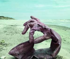 Nettoyage de plage en Belgique avec Surfrider Paris